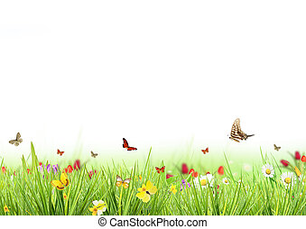 Spring meadow with white background