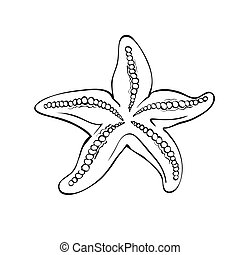 Starfish isolated on white. Drawing style black and white.