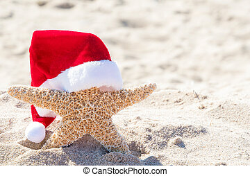 starfish with Santa hat in beach sand