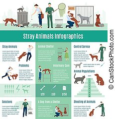 Stray Animals Infographics Set