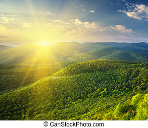 Sunny morning in mountain. Beautiful landscape composition.