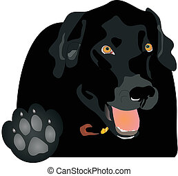 """Black Labrador holding up the paw, saying """"Talk to the Paw!"""" Play on words.."""
