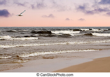 The beach on the Baltic Sea in the evening.