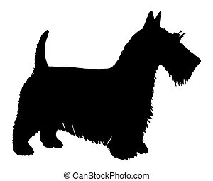 The black silhouette of a Scottish Terrier