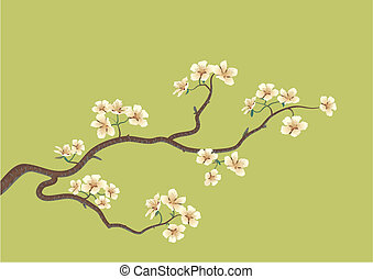 This is the vector illustration of a flowered sakura, japanese cherry tree