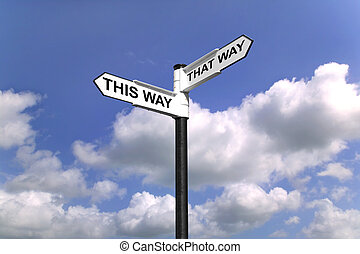 Signpost saying This Way That Way, Which way to turn good concept image for direction.