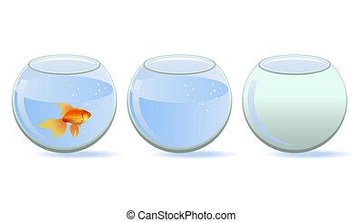 Three aquariums