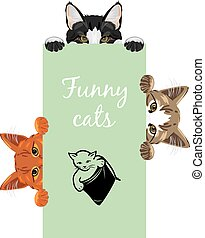 Three funny spying cats. Design for label