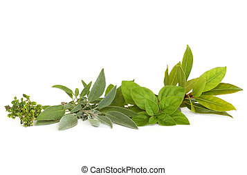 Thyme, sage, oregano and bay leaf herbs, isolated over white background.