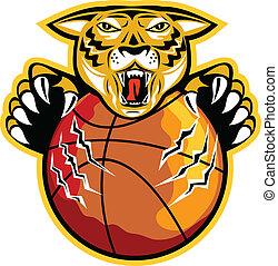 Tiger Basketball Ball Claws