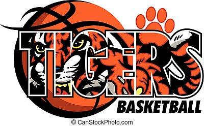 tigers basketball