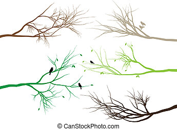 tree branches with birds and leaves, vector background