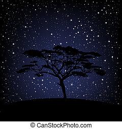 Tree over starry night