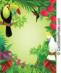 Tropical bird in the jungle