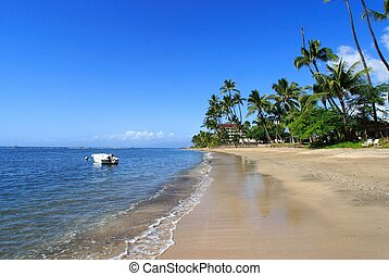 coastlin of Lahaina, Maui, Hawaii
