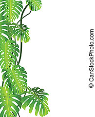 Vector illustration of tropical plant background