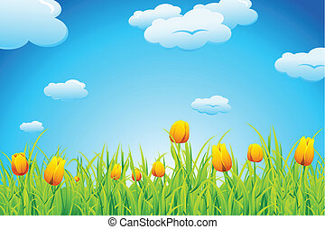 illustration of landscape with tulip garden and cloudscape