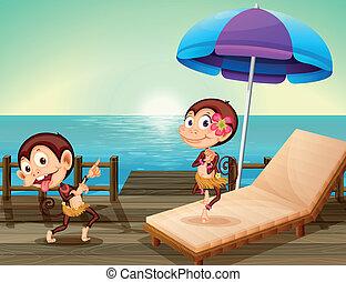 Two monkeys at the wooden bridge