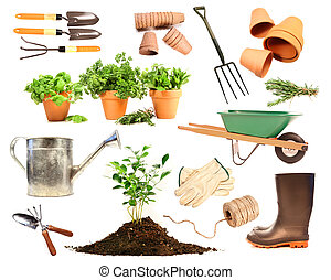 Variety of objects for spring planting on white background