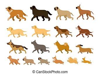 Various Dog Breeds Running Set