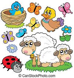 Various spring animals