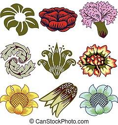 Nine Unique Flowers