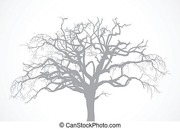 Vector bare old dry dead tree silhouette without leaf - oak crow