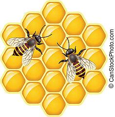 vector working bees on honeycells
