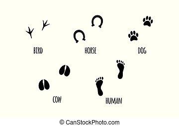 Vector black set of animal silhouettes foot print