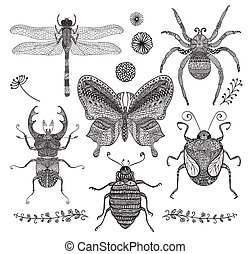 Vector Collection of Black Hand Drawn Doodle Insects