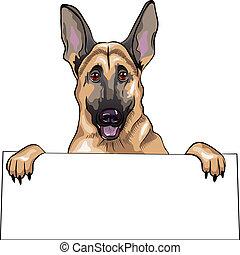 vector color sketch dog German shepherd breed smile