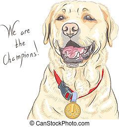 Smiling happy yellow dog breed Labrador Retriever champion