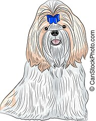color drawing of the dog breed Shih Tzu isolated on a white background