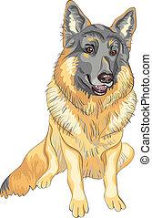 vector dog German shepherd breed smile
