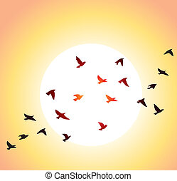 vector flock of flying birds and bright sun