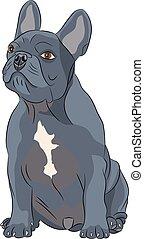 Vector french bulldog.
