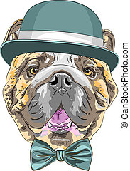 vector funny cartoon hipster dog English Bulldog breed