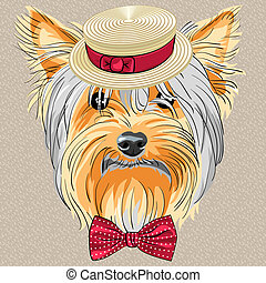 hipster dog Yorkshire Terrier breed in a Straw boater and bow tie