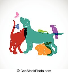 Vector group of pets - Dog, cat, parrot, chameleon, rabbit, butterfly, hummingbird isolated on white background