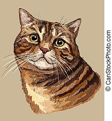 Vector hand drawing colorful cat 1