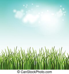 Vector illustration green summer field with flowers and grass