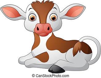 Cute baby cow sitting