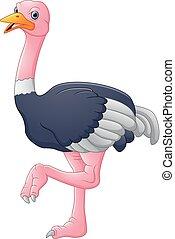 vector illustration of cute ostrich cartoon
