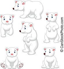 Vector illustration of Cute polar bear cartoon collection