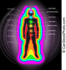 Vector Illustration of Human Auras and Chakras, Eps10 Vector, Gradient Mesh and Transparency Used
