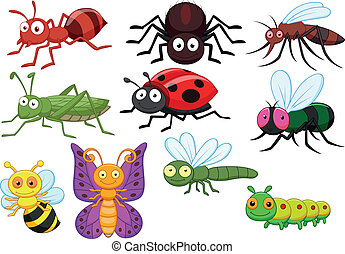 Vector illustration of Insect cartoon collection set