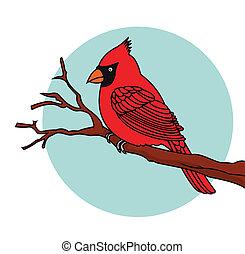 Vector Illustration Of Red Bird cardinals