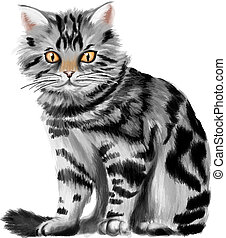 Vector illustration of sitting tabby kitten