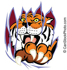 Tiger with claw tearing the backgro