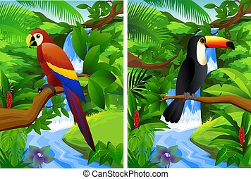Tropical forest background